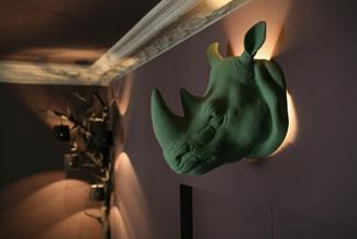 Лампа из носорога - сафари из Франции